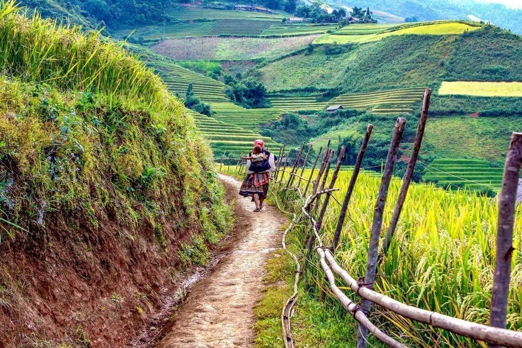 Mine 5 rejsefavoritter - Vietnam - provence