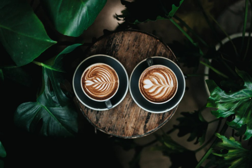 Denmark, 7 cool coffee bars, coffee and plants travel