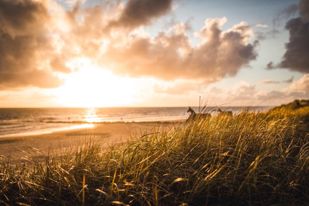 Blåvand - Dinamarca - Jutlândia - praia - mar - kilter - escultura de cavalo - pôr do sol, nascer do sol - viagem