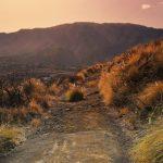 El Hierro, La Palma, La Gomera, Canary Islands, nature, spain, vitus travel, travel deals, travel