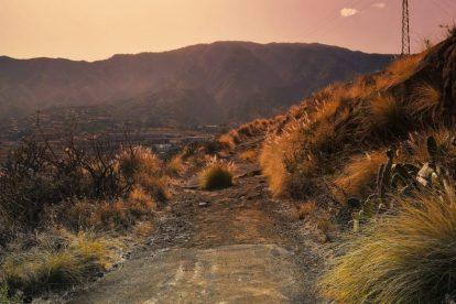 El Hierro, La Palma, La Gomera, Isole Canarie, natura, spagna, vitus viaggi, offerte di viaggio, viaggi