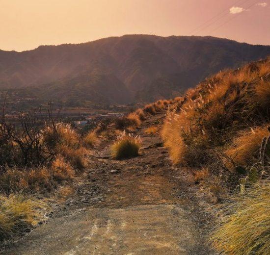 El Hierro, La Palma, La Gomera, Canary Islands, kalikasan, espanya, paglalakbay sa vitus, mga deal sa paglalakbay, paglalakbay