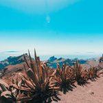 Tenerife, Canary Islands, long term travel, vitus travel, travel deals, travel, spain