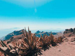 Tenerife, Kanarski otoci, dugoročna putovanja, vitus putovanja, turističke ponude, putovanja, španjolska