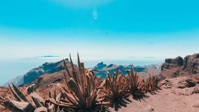 テネリフェ島、カナリア諸島、長期旅行、vitus旅行、旅行のお得な情報、旅行、スペイン