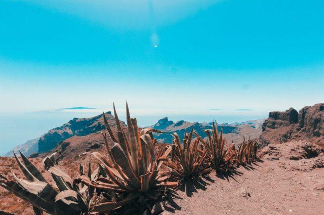 Ténérife, îles Canaries, voyage à long terme, voyage vitus, offres de voyage, voyage, espagne