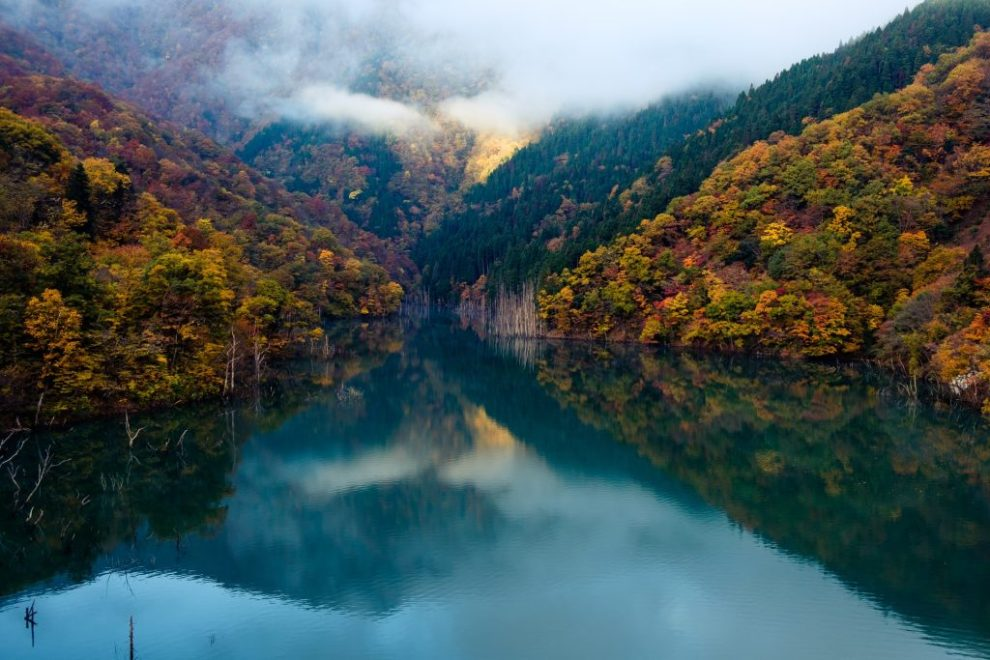 Japan, Tokuyama Dam, Ibigawa-chō, skov, sø, tåge, natur, rejser,