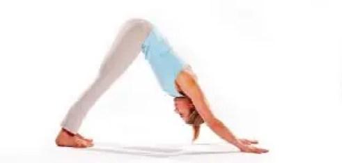 Adho Mukha Yoga posture