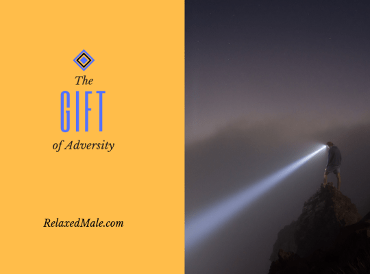 Experience adversity as a gift