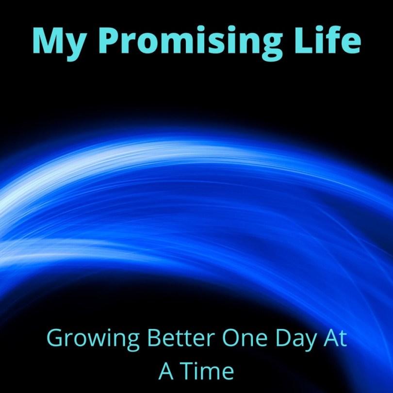 MyPromisingLife Seven Podcasts For Mens Mindsets