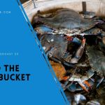 EP 23 – Avoid the Crab bucket