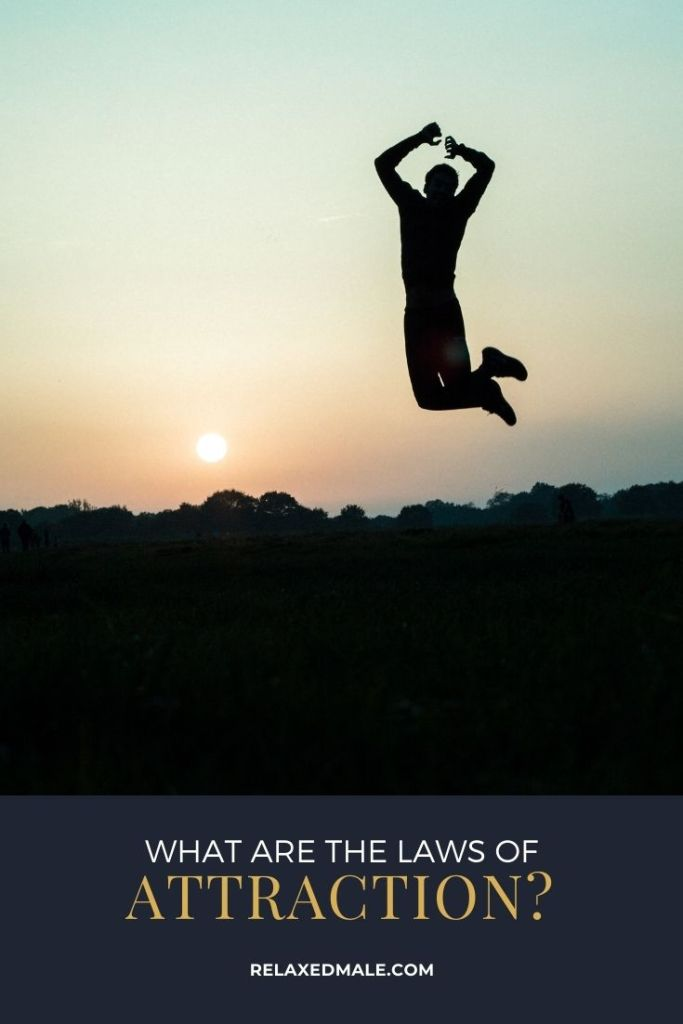 Laws Pin 683x1024 What are the Laws Of Attraction?