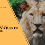 The 4 Virtues of a Stoic