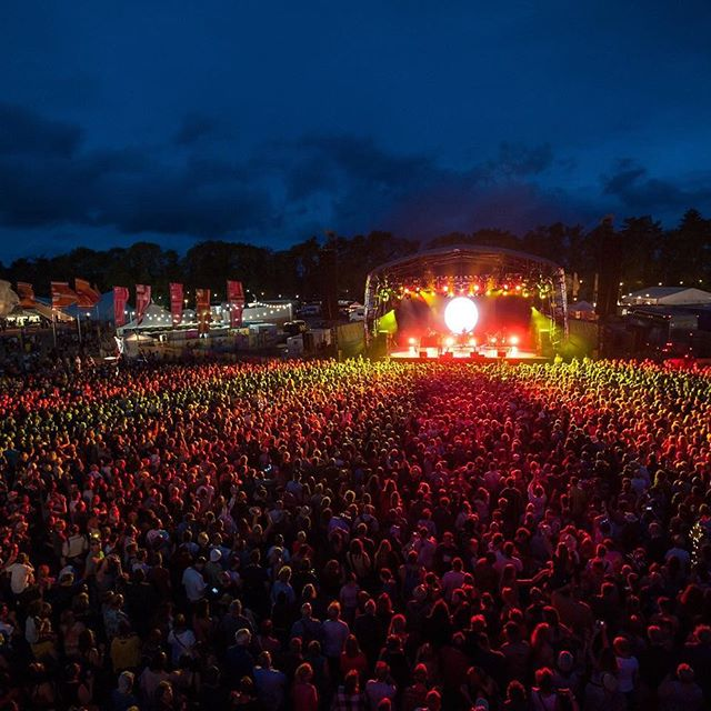 Disposable and biodegradable pee bags for WOMAD festival from Releaf Ltd