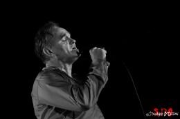Morrissey 01web
