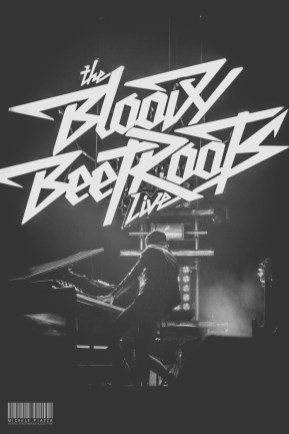 The Bloody Beetroots@Home Festival 2014-13