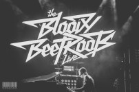 The Bloody Beetroots@Home Festival 2014-5