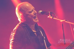 Wire @ Lars Rock Fest 2016 - Marco Zuccaccia photo IMG_4452