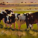 Cow Lineup
