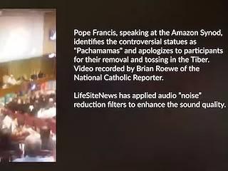 Pachamamas al río: el Papa pide perdón