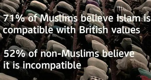 UK Survey Muslims