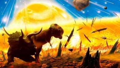 Photo of Identifican una nueva extinción masiva hace más de 200 millones de años