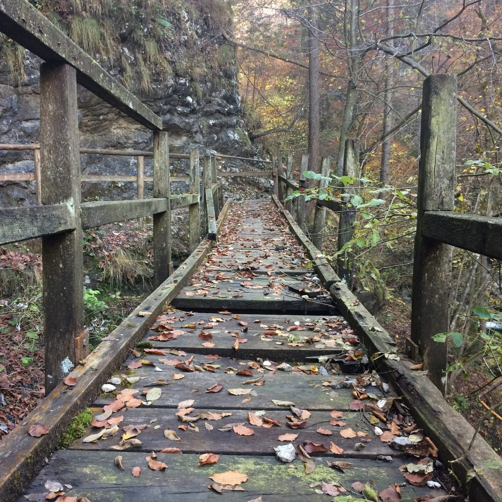 WALK THE RICKETY BRIDGE!