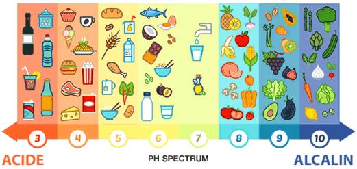 acides alcalins aliments