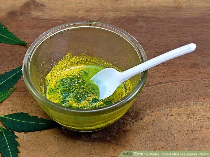 aid1630790-v4-728px-Make-Fresh-Neem-Leaves-Paste-Step-8