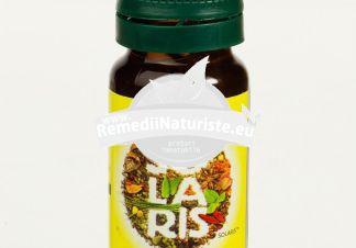 ULEI SALVIE VOLATIL 10ml SOLARIS Tratament naturist ulei volatil pentru uz intern afectiuni vasculare dischinezie biliara inflamatii gastrointestinale