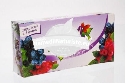 CEAI FRUCTE DE PADURE 100dz FARES Tratament naturist ceai aromat vitaminizant aromat