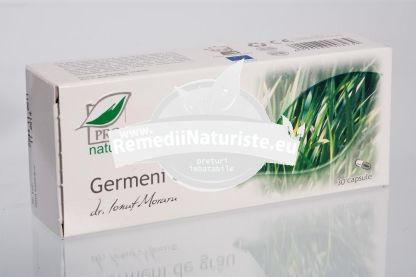 GERMENI DE GRAU 30cps blister MEDICA Tratament naturist diabetul zaharat de tipul i si ii astm bronsic coleretic tranzit intestinal