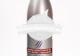 SAMPON SILKAT RESTRUCTURANT 300 ml ALFA ROM GRUP 2000 Tratament naturist regenereaza parul vopsit degradat par degradat
