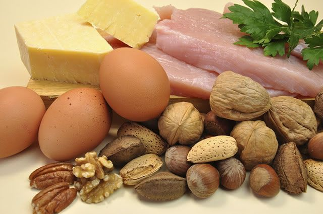 Existem dois tipos principais de proteína, aquelas de origem animal e a vegetal