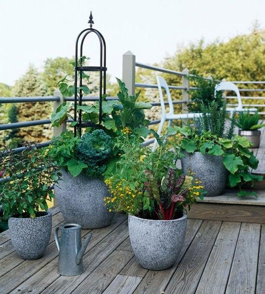 Concrete Container Garden