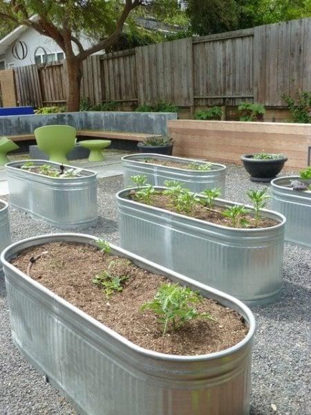 Eclectic Modern Garden