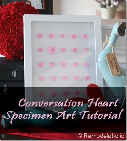 conversation-heart-specimen-art-tutorial