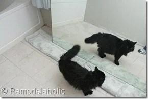 Framing a large bathroom mirror (3)