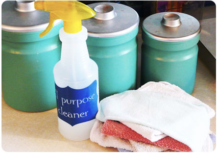 DIY Disinfectant Spray The Krazy Coupon Lady