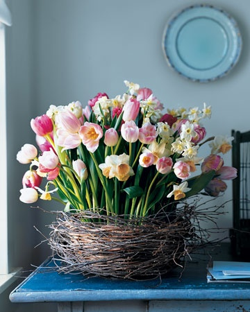 Martha Stewart tulips in nest