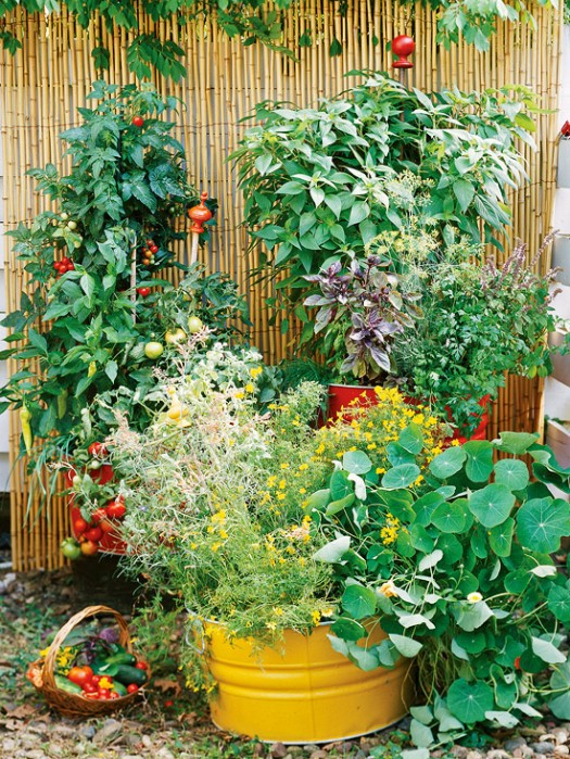 BH&G container garden, Gardening Ideas for your whole family!