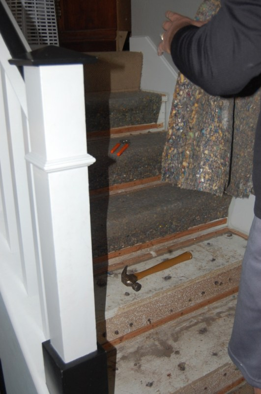 stair remodel, tearing up the carpet