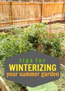 Tips-for-Winterizing-Your-Summer-Garden-via-Tipsaholic