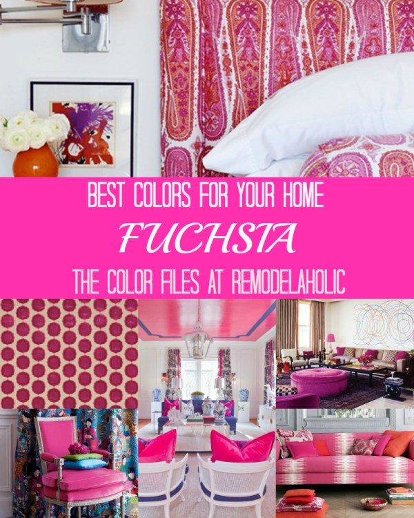 Fuschia collage