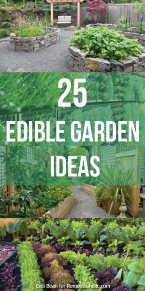 24-edible-garden-ideas-vertical