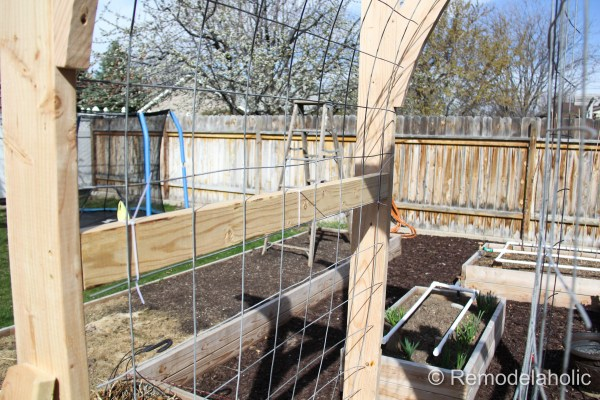 Vegetable Garden Arbor DIY Plans-47