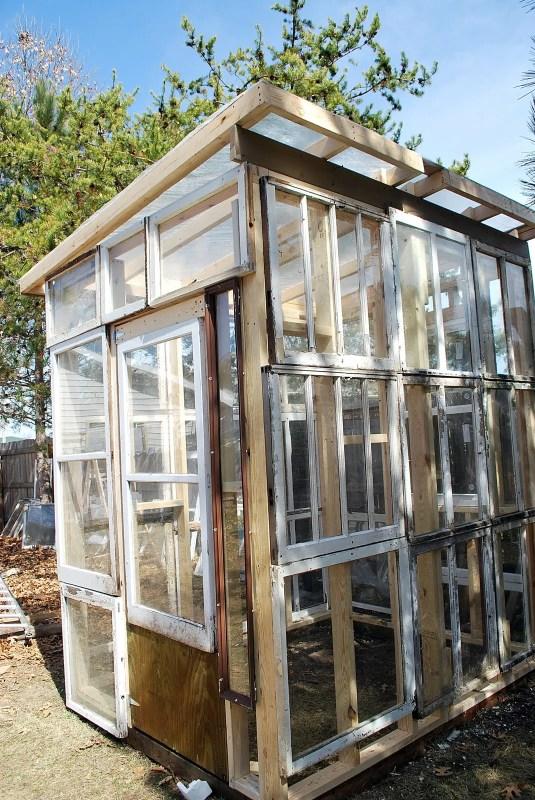 Sparta Savings - greenhouse from old windows - via Remodelaholic