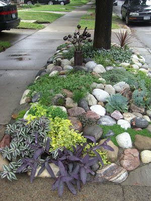 succulents and rocks hell strip park strip flower bed from Remodelaholic.