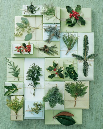 how to identify and perserve winter evergreens - Martha Stewart via @Remodelaholic