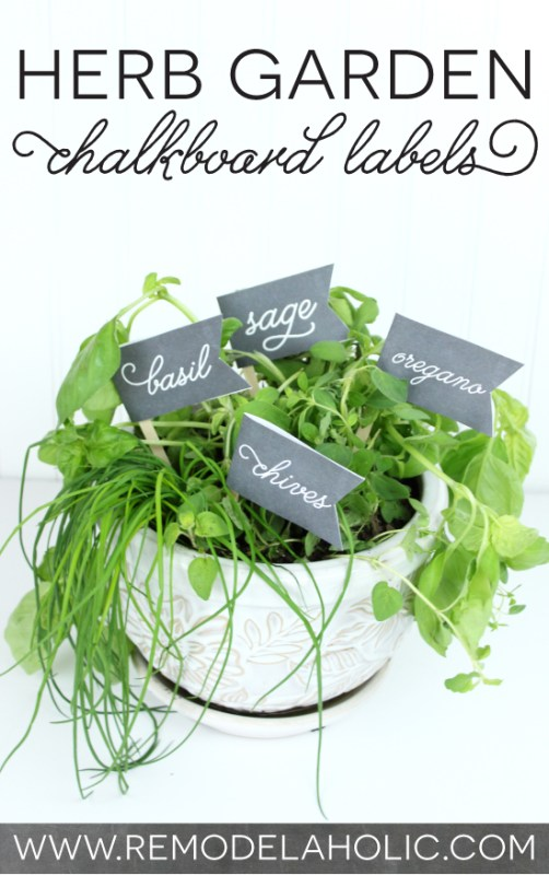 Cute and easy! Herb Garden Chalkboard Labels | Remodelaholic.com